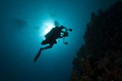 Validation plongeur vidéaste et antéor